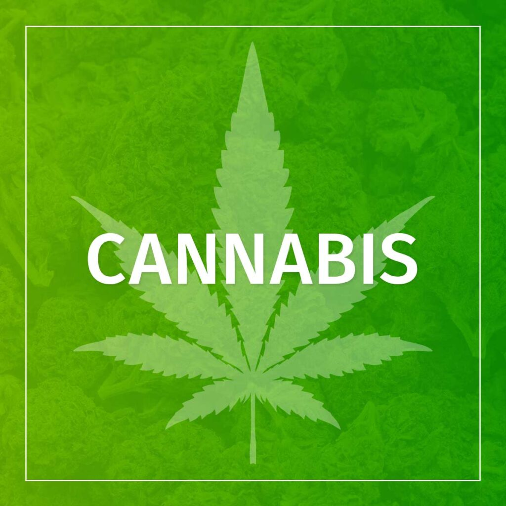 WY We Talk: Cannabis